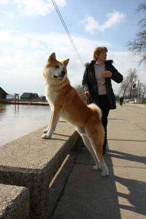 Lady with Akita Inu enjoying on the riverside