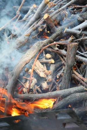 Barbecue preparation with fire and firewood on grill