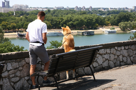 Akita Inu with its owner enjoying beautiful city and river view