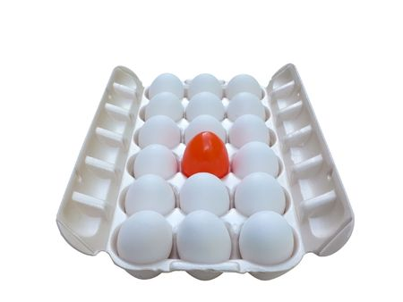 a unique egg in a carton isolated  Stock Photo
