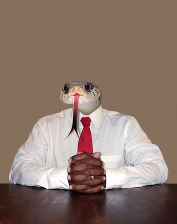 dishonest  businessman personality concept photo manipulation depicting a snake's head for a head sitting at a desk ready for a meeting.  isolated over a neutral colored background. Stock fotó