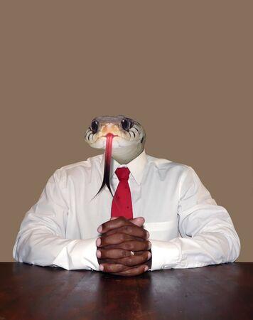personalit�: disonesto imprenditore personalit� concetto manipolazione foto raffigurante la testa di un serpente per un capo seduta davanti ad una scrivania pronto per una riunione. isolati nel corso di un colore di sfondo neutro. Archivio Fotografico