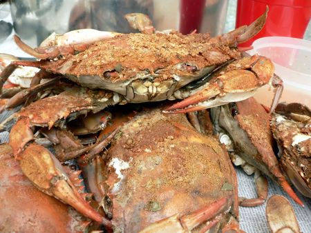 blue crab: cooked blue crabs from the Chesapeake Bay of Maryland Stock Photo