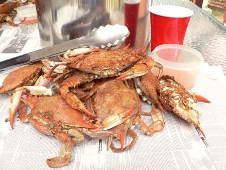 steamed: cooked blue crabs from the Chesapeake Bay of Maryland Stock Photo