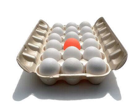 a unique egg in a carton