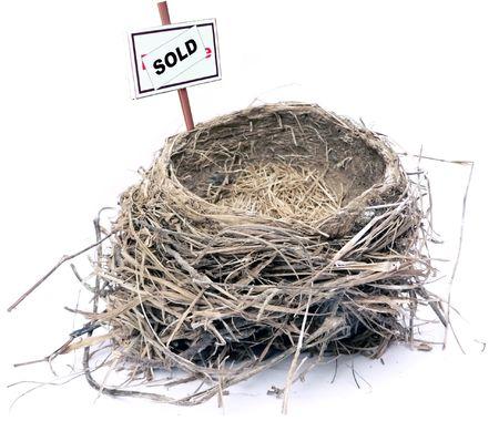 白い背景の上の鳥の巣の不動産市場の概念写真 写真素材