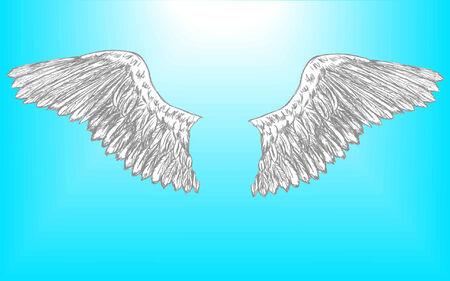 vector illustratie van een paar vleugels adelaar die is ingesteld voor het bewerken