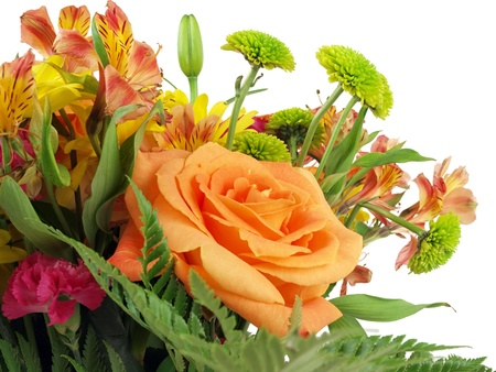 rosas naranjas: Cerca de un ramo de flores sobre un fondo blanco