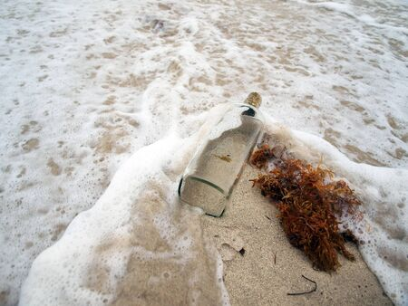 liquor bottle: a empty liquor bottle caught in the surf on a beach of Miami South Beach, Florida.