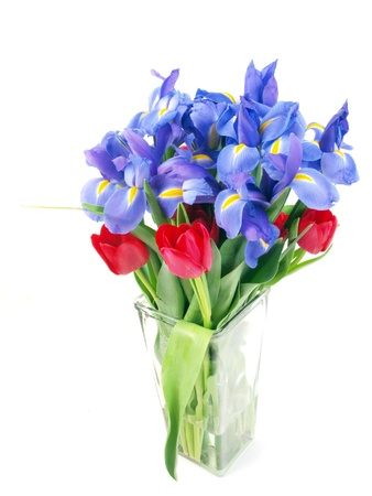 a bouquet of purple colored irises and red colored tulips in a clear glass vase isolated on a white background