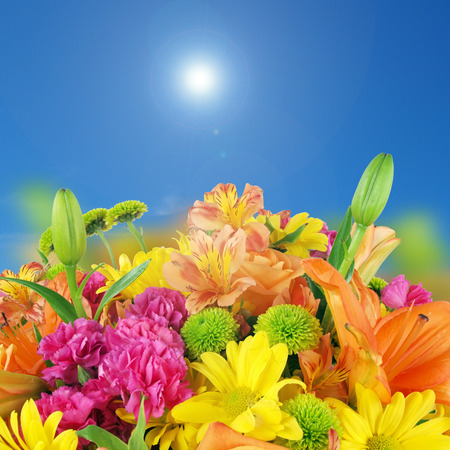 a background image of flowers consisting of irises, roses, petunias, and daiseys under a sunny bluesky. photo