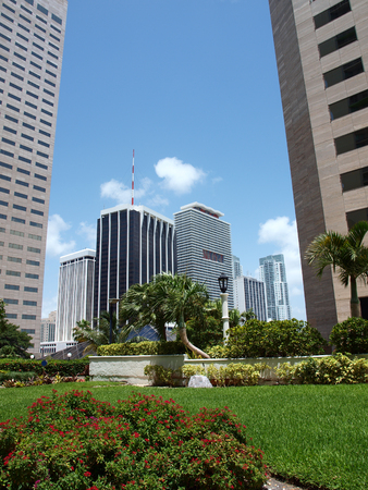 day scene image of buildings of downtown Miami