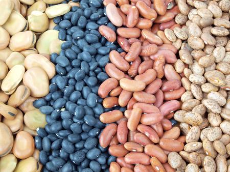 frijoles: una variedad de frijoles secos fava, frijoles, frijoles negros y frijoles pintos