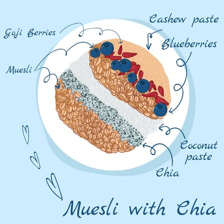 Muesli with chia art illustration hand draw