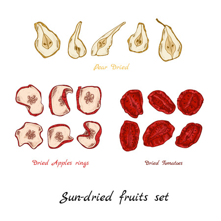Sun-dried fruit set hand-draw illustration apple tomato pear Illustration
