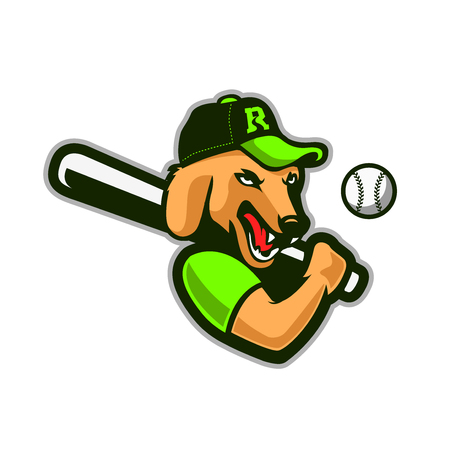 A dog with baseball outfit.