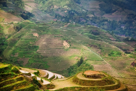 terracing: Dragons Backbone Rice Terraces - ancient beautiful rice terraces of Longsheng near Guilin, Guanxi province, China Stock Photo