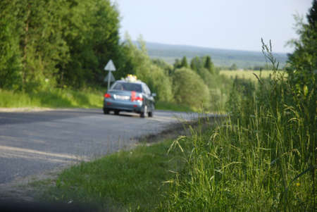 raod: close-up of grass and blured raod and car