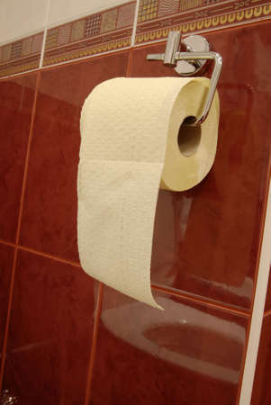 water closet: toilet paper in water closet Stock Photo