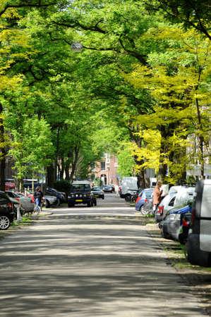 avenue in Amsterdam