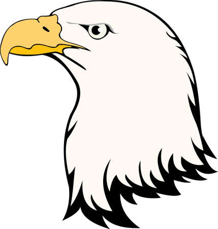 vector image of eagle head isolated on white