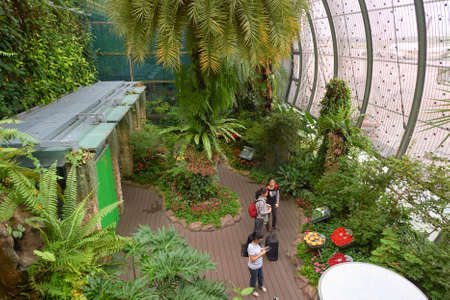 SINGAPORE - CIRCA NOVEMBER, 2015: inside Butterfly Garden at Changi Airport Terminal 3.