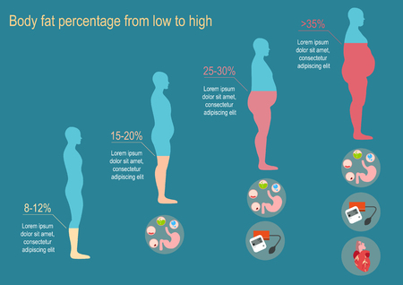 progression: The progression of obesity. Infographics. Body fat percentage from low to high. Diseases from obesity. Flat design. Illustration