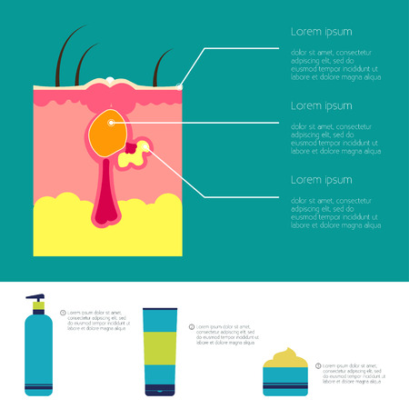 pores: Skin problems illustration Infographic of skin problems Structure of the pimple Cosmetics struggle with acne and skin care