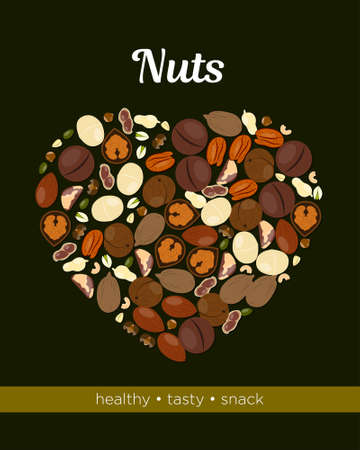 Nuts vector illustration Design template for packing and posters