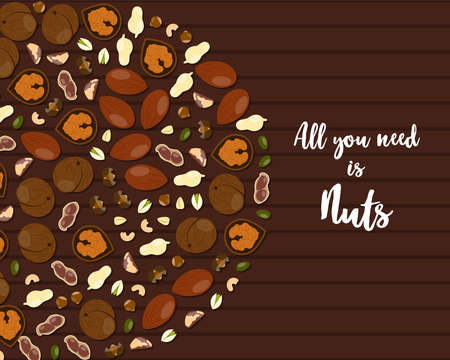 Assorted nuts Vector illustration in flat style