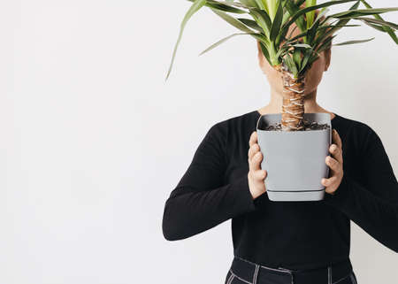 Home garden Photo template with copy space Young woman is holding tropical tree in gray pot in front her face