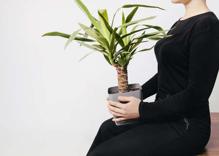 Plant care Photo template with copy space Girl is sitting with tropical tree in gray pot on her knees