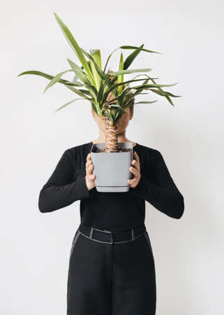 Plant pot Photo template in minimal style Girl in total black outfit is holding tropical tree in gray pot in front her face