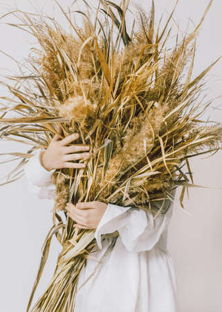 Dry flowers Conceptual photo in minimal style Girl in white bohemian dress is holding armful of fields plants in her hands Archivio Fotografico