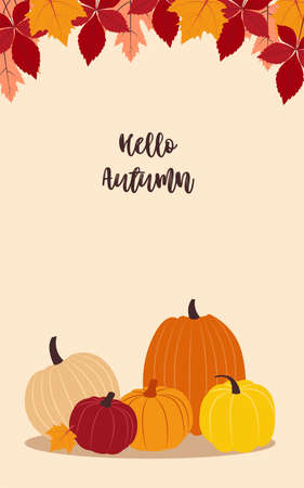 Autumn harvest. Vector illustration with copy space. Flat design Colorful various pumpkins and autumn leaves on beige background