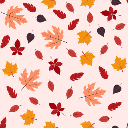 Autumn leaves seamless pattern Vector illustration in flat design Red, orange, yellow and brown leaves on light pink background
