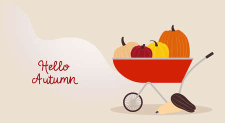 Pumpkins Vector illustration with copy space in flat design Autumn harvest in red trolley on wavy beige background