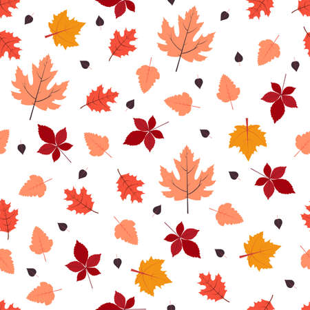 Autumn seamless pattern. Vector illustration in flat design Fallen leaves of oak, maple and other trees on white background Vettoriali