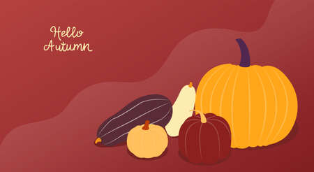 Hello autumn. Vector illustration with copy space. Colorful banner with various pumpkins on red wavy backdrop. Flat design