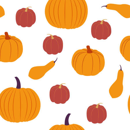 Vector seamless pattern with squash. Flat design