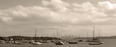 Sydney panorama, yacht harbour photo