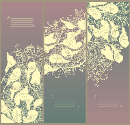 decorative floral banners- line drawing calla background  Illustration