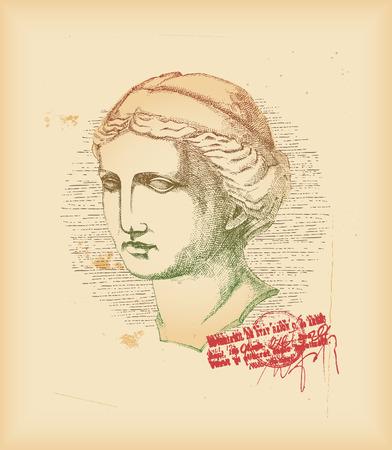 venus: Venus head - drawing Illustration