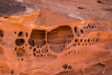 canyonlands: Sandstone Detail in Canyonlands