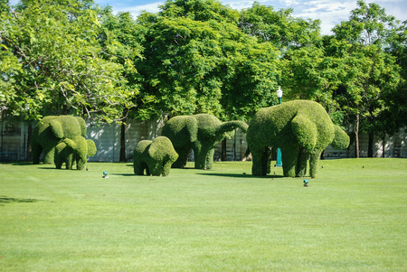 hedges: Elephant Hedges Royal Summer Palace, Thailand Stock Photo