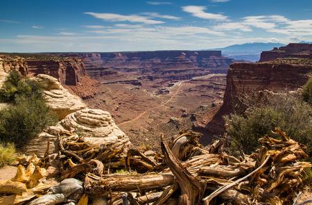canyonlands: Canyonlands National Park, Utah