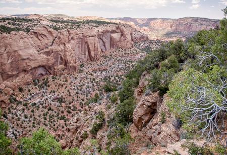 anasazi ruins: Navajo National Monument