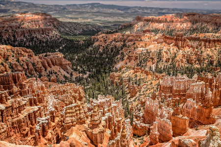 bryce canyon: Bryce Canyon Hoodoos Stock Photo