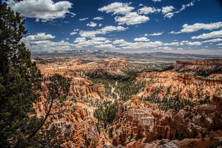 utah: Bryce Canyon, Utah Stock Photo