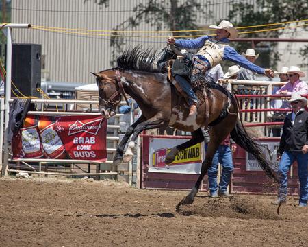 saddle: Saddle Bronc Rider, Cottonwood, California Rodeo